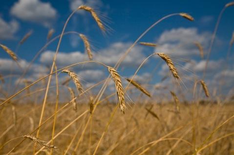 Maheteravili. Foto: Euroopa Komisjon