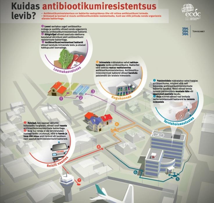 Antibiootikumiravile allumatud bakterid võivad inimorganismi jõuda ka loomakasvatusest või keskkonnast.